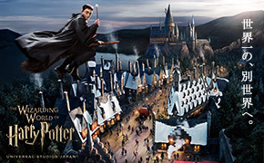 the-wizarding-world-of-harry-potter.jpg